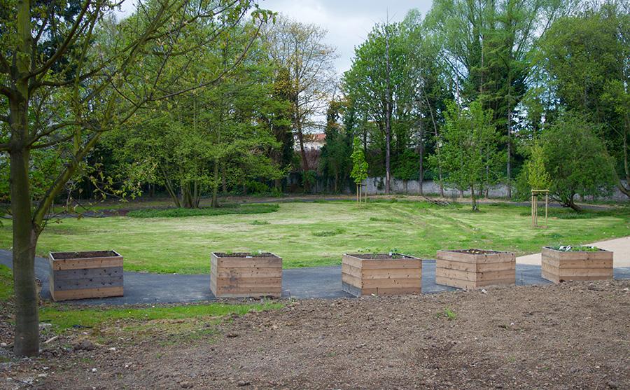 Le potager, le jardin - Stephenson Garden