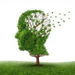 Alzheimer - Stephenson Garden