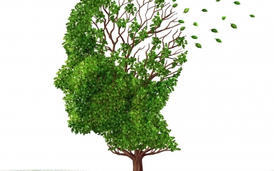 La maladie d'Alzheimer et sa prise en charge